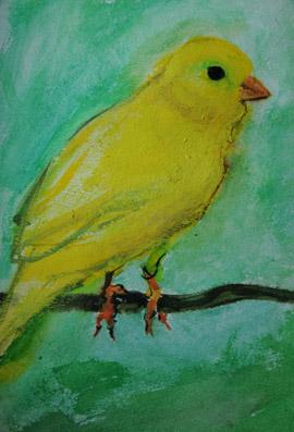 Kanariefågeln. Bie Erenurm