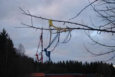 Bergsteinn Asbjörnsson – Trådar på en gren